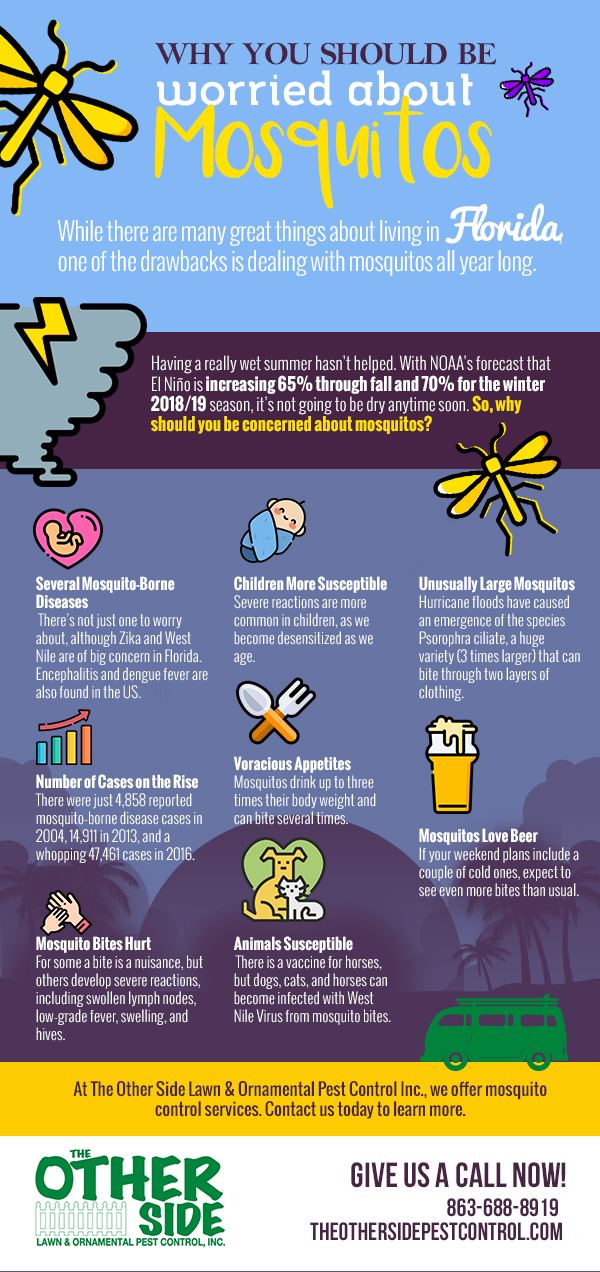 Why You Should Be Concerned About Mosquitos [Infograpics]