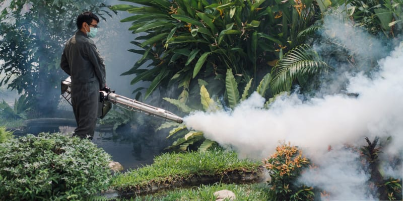 Pest Control Services in Lakeland, Florida